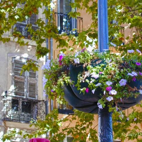 Aix-en-Provence Flower Basket