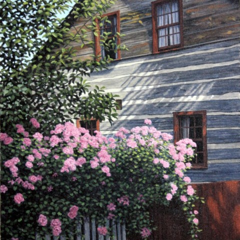 Pink Roses, Old Salem, North Carolina