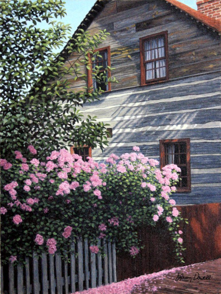 Pink Roses, Old Salem
